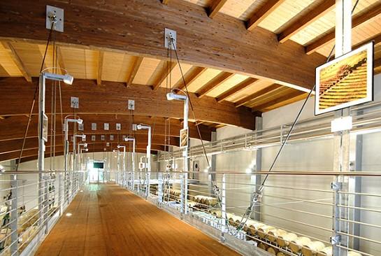 Vivereverde online shop arredi da giardino arredamento for Arredi da giardino in legno